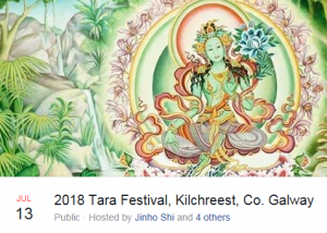 Summer Festivals 2018 featuring the Universal Energy Arts & YogiChild Academy
