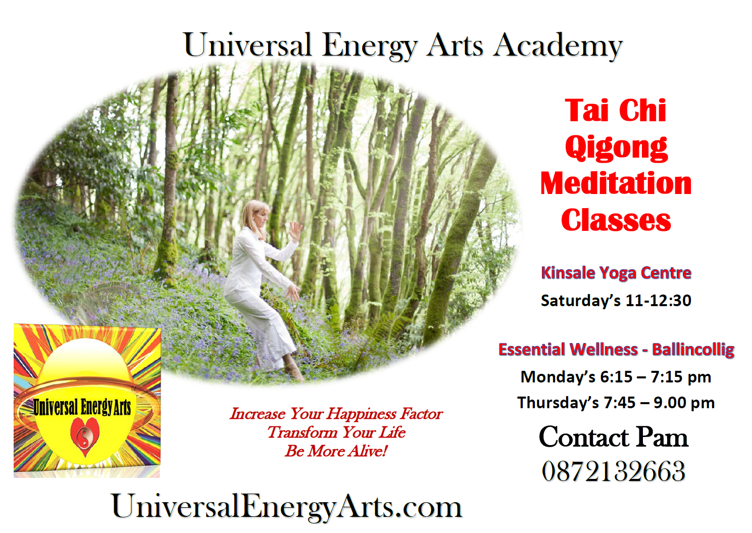 Tai Chi Qigong Meditation Classes – Cork